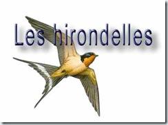 dessin_hirondelle