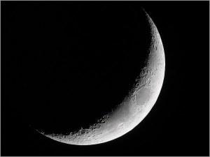 croissant_lune 1