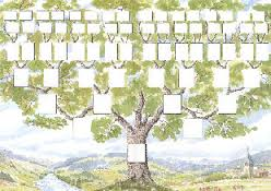 images arbre généalogique