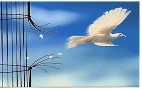 Ta nouvelle liberté m'emprisonne à jamais...Mais va mon ami...