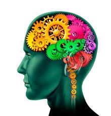 téléchargement cerveau qui bout